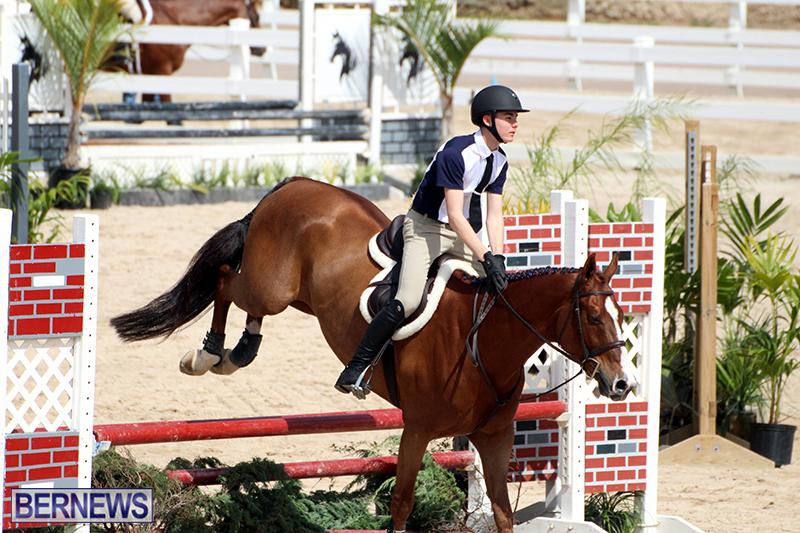 equestrian-Bermuda-Mar-27-2019-7
