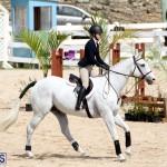 equestrian Bermuda Mar 27 2019 (9)