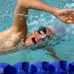 swimming Bermuda March 27 2019 (13)