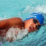swimming Bermuda March 27 2019 (17)