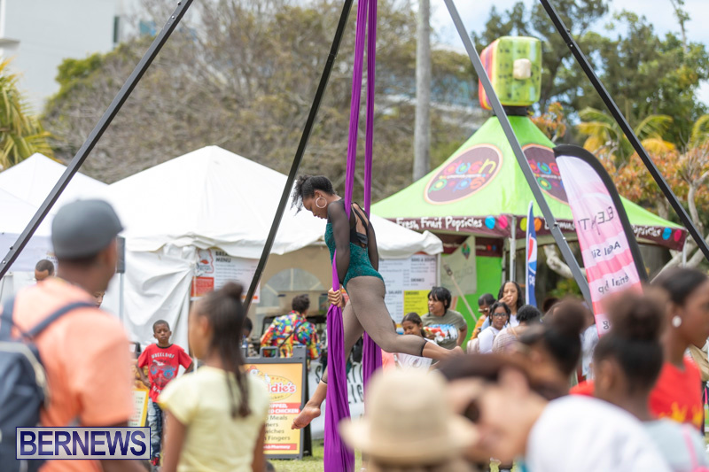 Ag-Show-At-Botanical-Gardens-Bermuda-April-13-2019-0860
