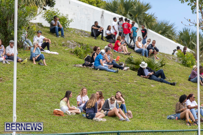 Ag-Show-At-Botanical-Gardens-Bermuda-April-13-2019-0882