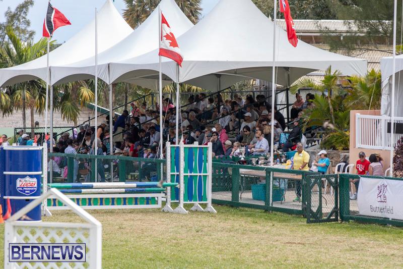 Ag-Show-At-Botanical-Gardens-Bermuda-April-13-2019-0921