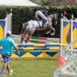 Ag Show At Botanical Gardens Bermuda, April 13 2019-1091