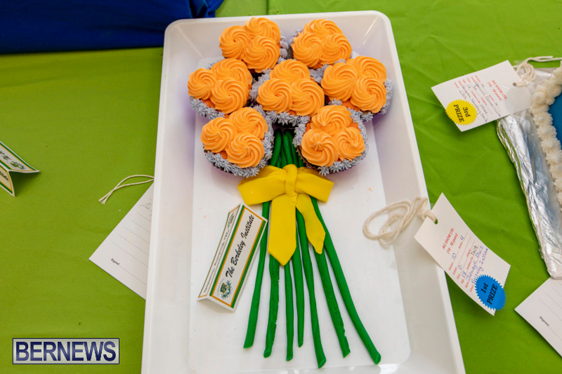Ag-Show-Baked-Goods-Cakes-Bermuda-April-10-2019-9566