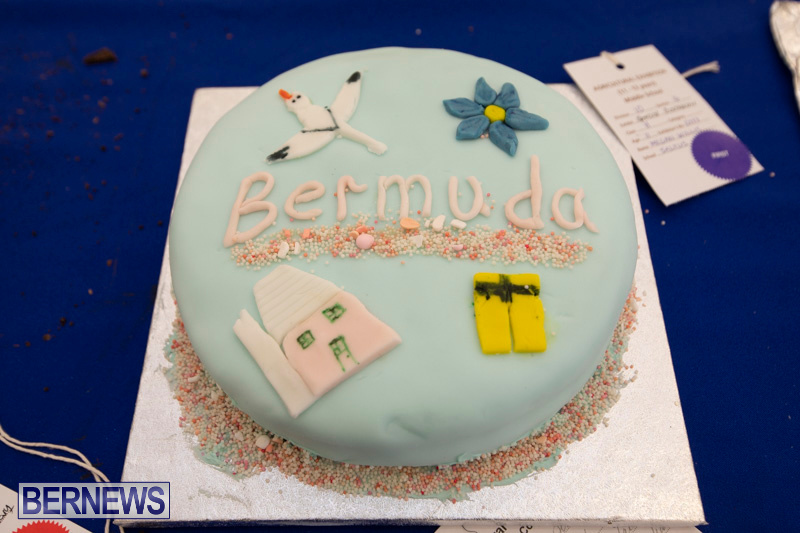 Ag-Show-Baked-Goods-Cakes-Bermuda-April-10-2019-9637