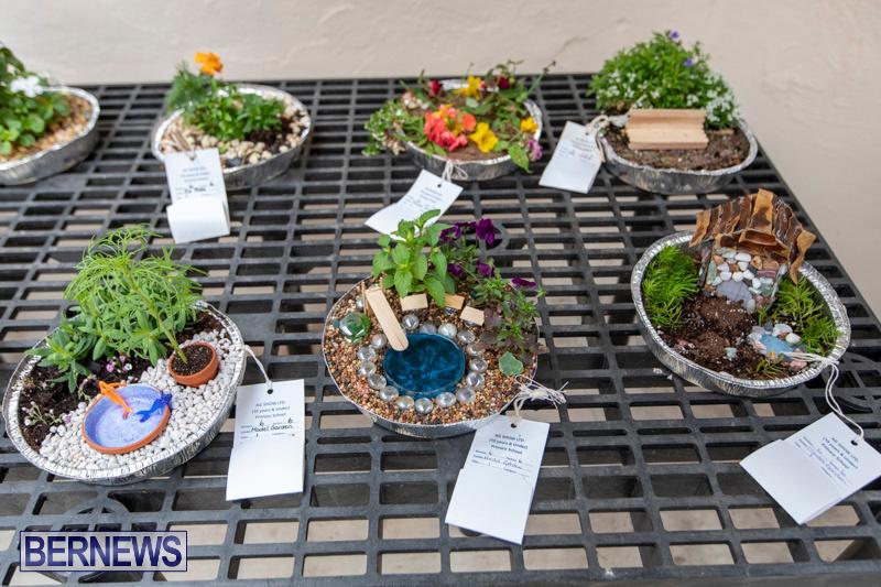 Ag-Show-Plants-Bermuda-April-10-2019-9339
