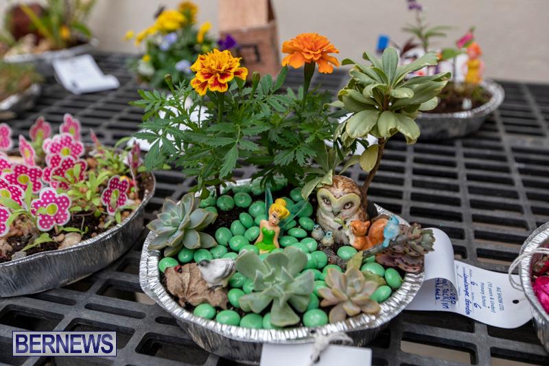 Ag-Show-Plants-Bermuda-April-10-2019-9341