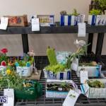 Ag Show Plants Bermuda, April 10 2019-9365