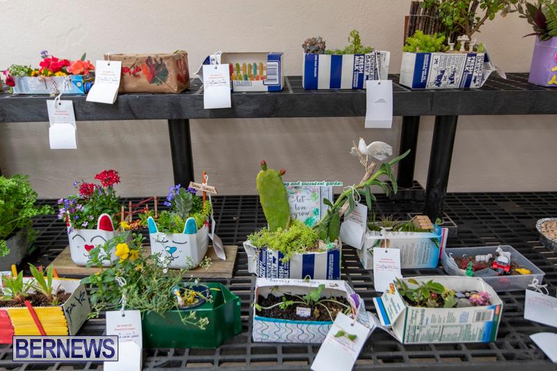 Ag-Show-Plants-Bermuda-April-10-2019-9365