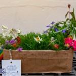Ag Show Plants Bermuda, April 10 2019-9370