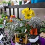 Ag Show Plants Bermuda, April 10 2019-9373