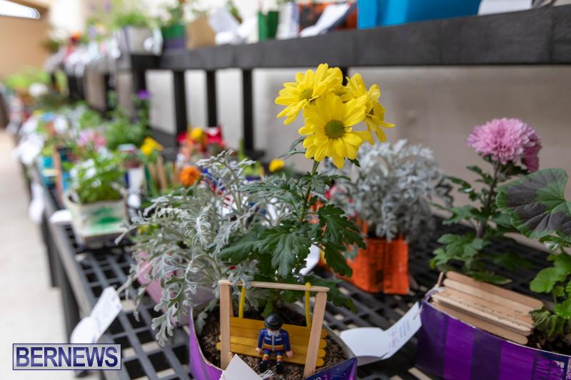 Ag-Show-Plants-Bermuda-April-10-2019-9373