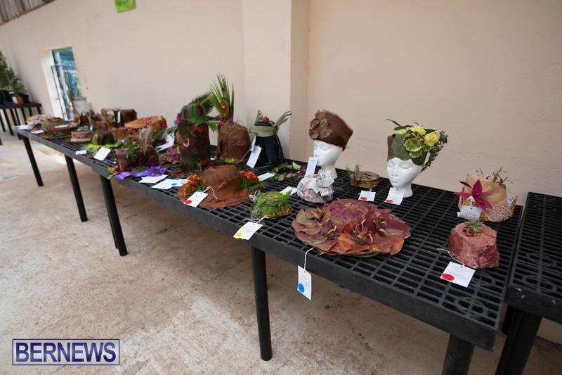 Ag-Show-Plants-Bermuda-April-10-2019-9390