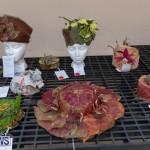 Ag Show Plants Bermuda, April 10 2019-9392