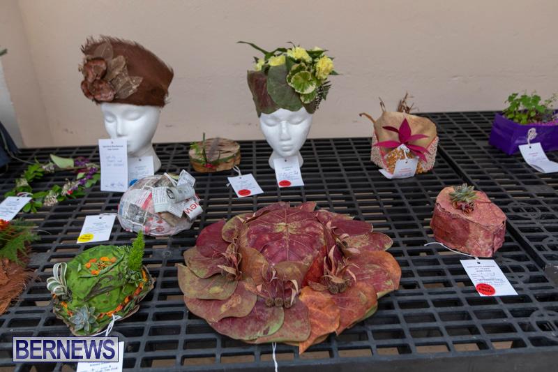 Ag-Show-Plants-Bermuda-April-10-2019-9392