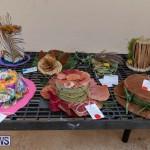 Ag Show Plants Bermuda, April 10 2019-9400