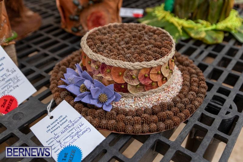 Ag-Show-Plants-Bermuda-April-10-2019-9408