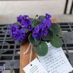 Ag Show Plants Bermuda, April 10 2019-9436