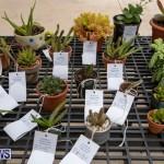 Ag Show Plants Bermuda, April 10 2019-9520