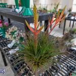 Ag Show Plants Bermuda, April 10 2019-9538
