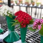 Ag Show Plants Bermuda, April 10 2019-9540