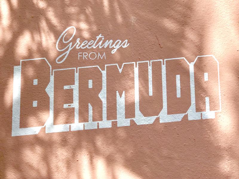 Bermuda Mural Unveiled April 2019 (1)