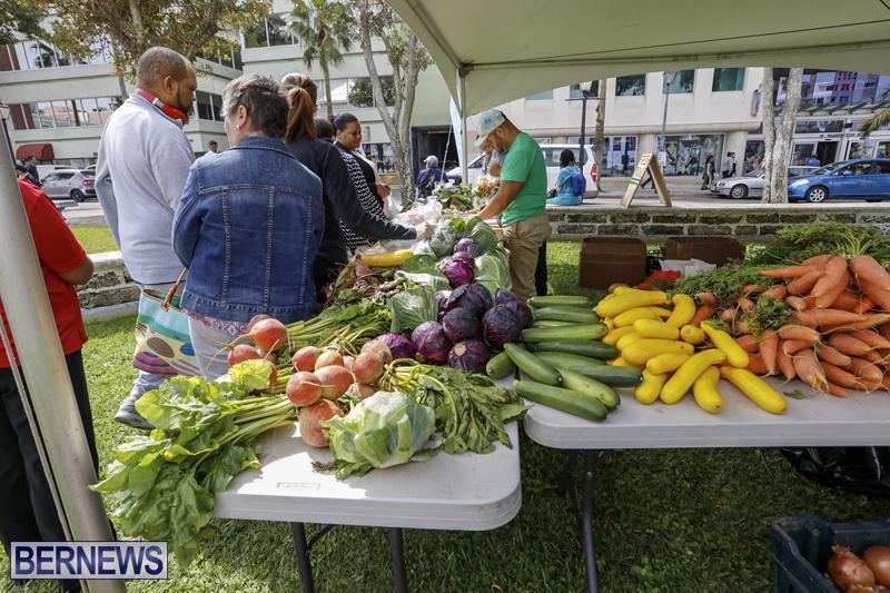 Farmer's Market Eat More Vegetables Bermuda April 10 2019 (13)