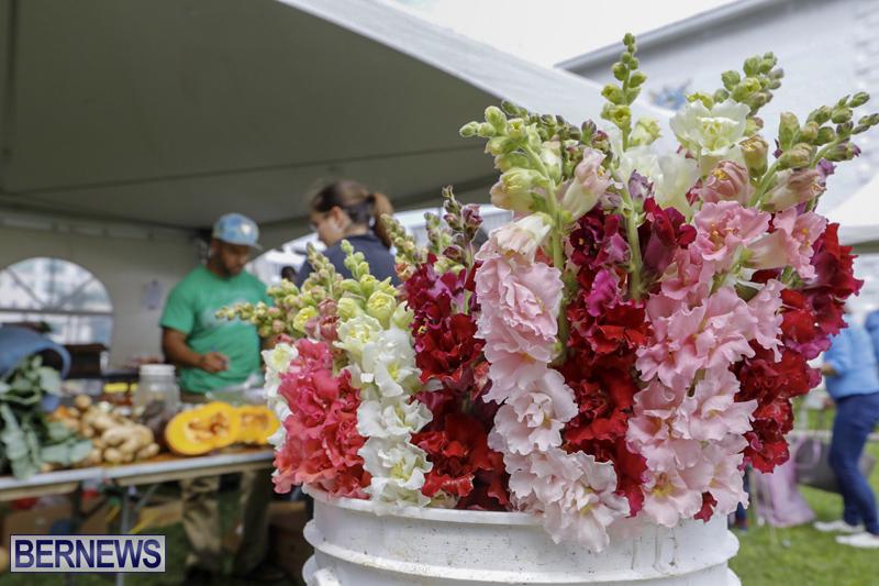 Farmer's Market Eat More Vegetables Bermuda April 10 2019 (27)