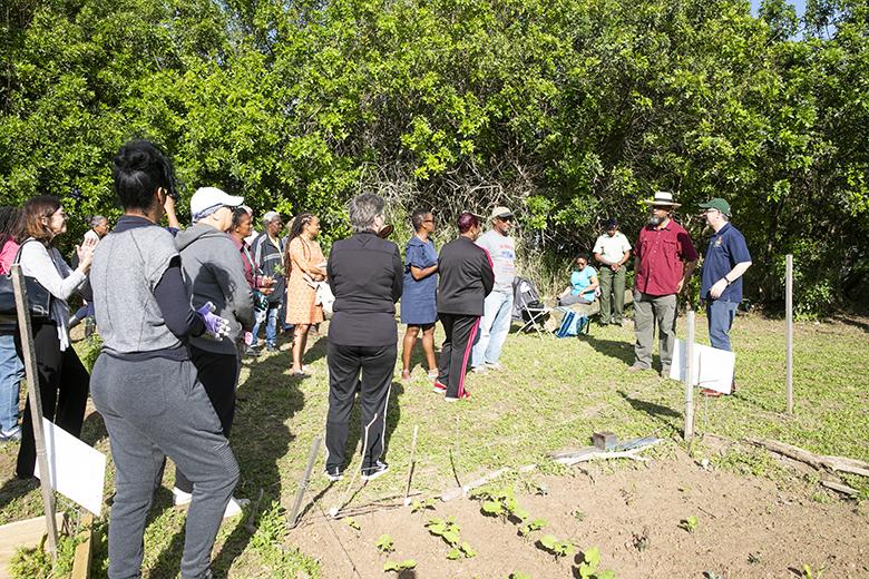 Grow, Eat, Save workshop Bermuda April 2019 (3)