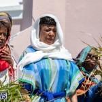 Jesus The Walk to Calvary Bermuda, April 19 2019-1955