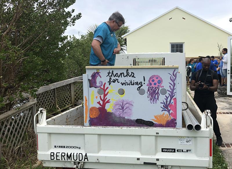 Lou Seal Bermuda April 2019 (5)