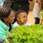 Premier's Children's Easter Egg Hunt Bermuda, April 13 2019-0301