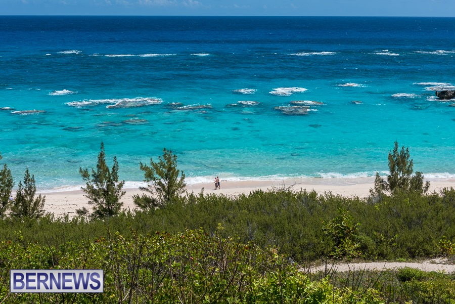 336 Warwick Long Bay, one of many beautiful stretches of Bermuda pink sand