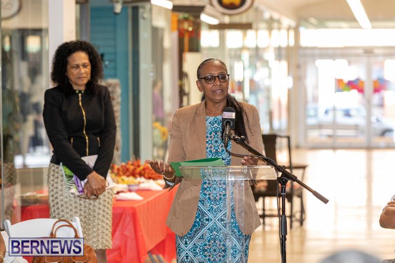 Dr Kuni Frith book launch Medicinal Plants Growing in Bermuda, April 30 2019-0187