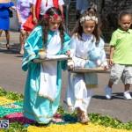 Santo Cristo Dos Milagres Festival Bermuda, May 19 2019-7411