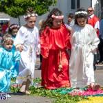 Santo Cristo Dos Milagres Festival Bermuda, May 19 2019-7419
