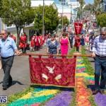 Santo Cristo Dos Milagres Festival Bermuda, May 19 2019-7444