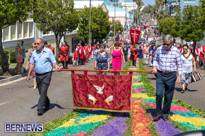 Santo-Cristo-Dos-Milagres-Festival-Bermuda-May-19-2019-7444