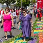 Santo Cristo Dos Milagres Festival Bermuda, May 19 2019-7446