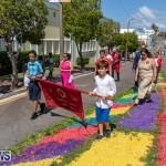 Santo Cristo Dos Milagres Festival Bermuda, May 19 2019-7641
