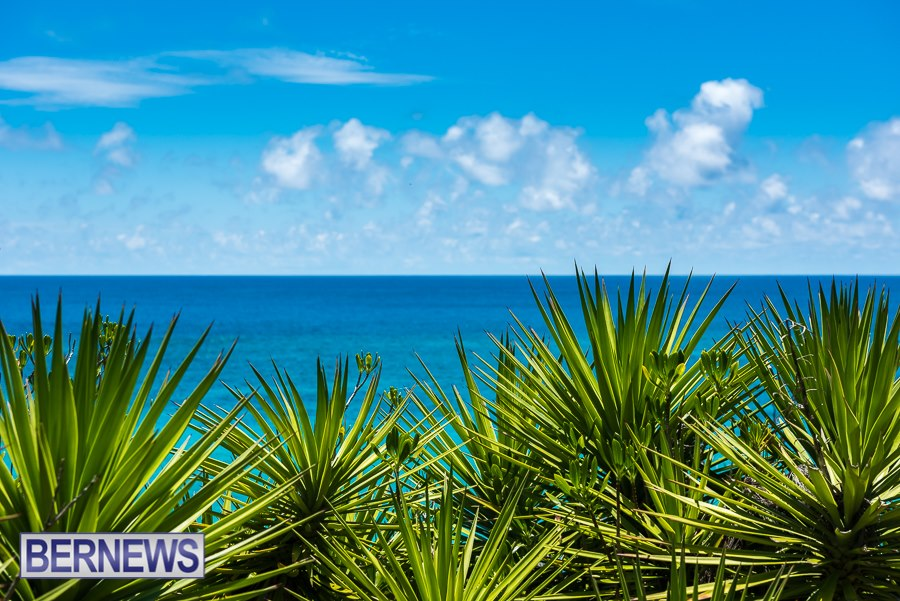 255 The beautiful bright colours of the south shore of Bermuda