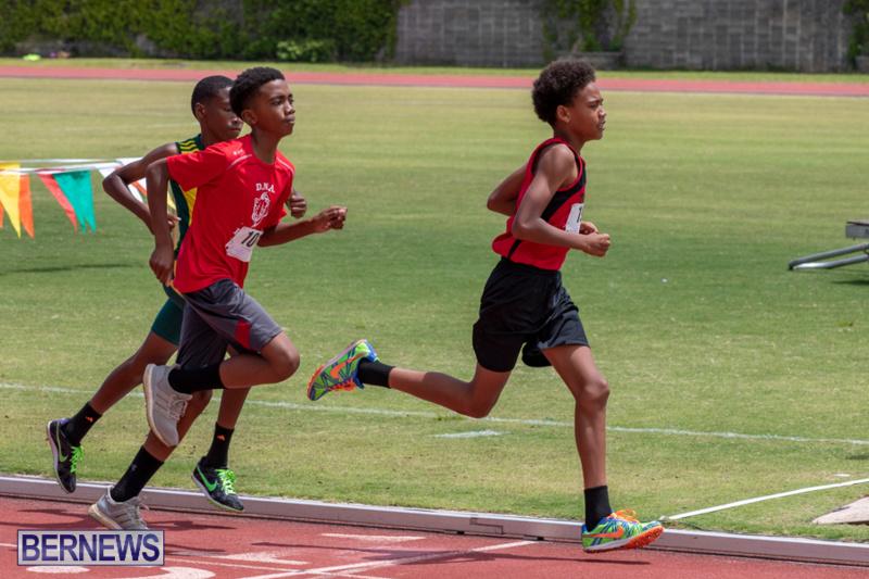 BNAA-National-Championships-Track-Meet-Bermuda-June-8-2019-4314