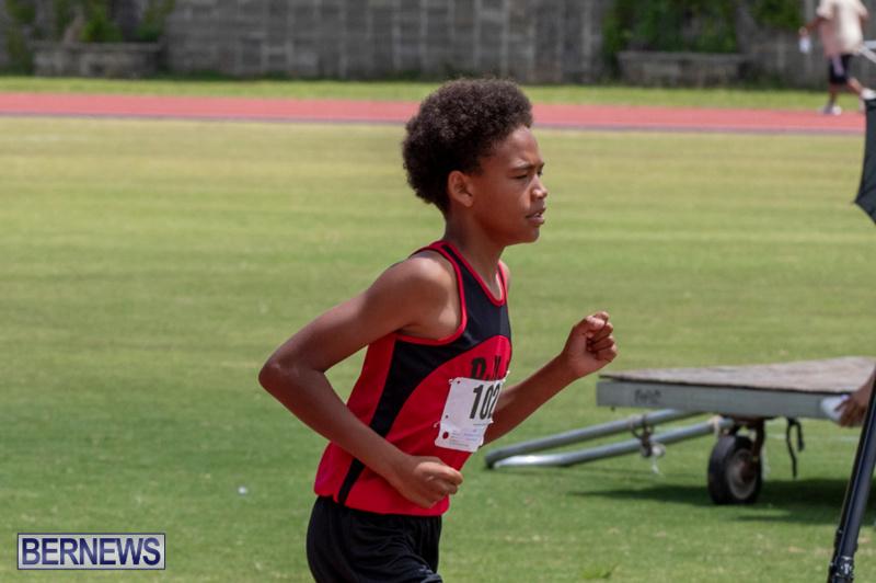 BNAA-National-Championships-Track-Meet-Bermuda-June-8-2019-4315