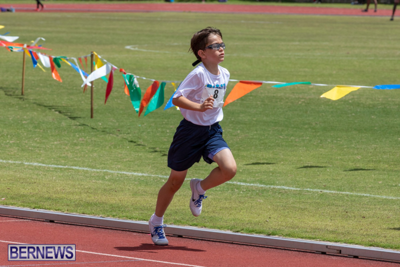 BNAA-National-Championships-Track-Meet-Bermuda-June-8-2019-4325