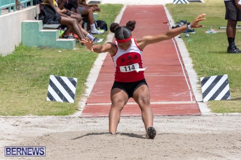 BNAA-National-Championships-Track-Meet-Bermuda-June-8-2019-4512
