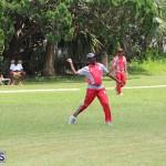 Bermuda Cricket June 9 2019 (3)