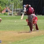 Bermuda Cricket June 9 2019 (6)