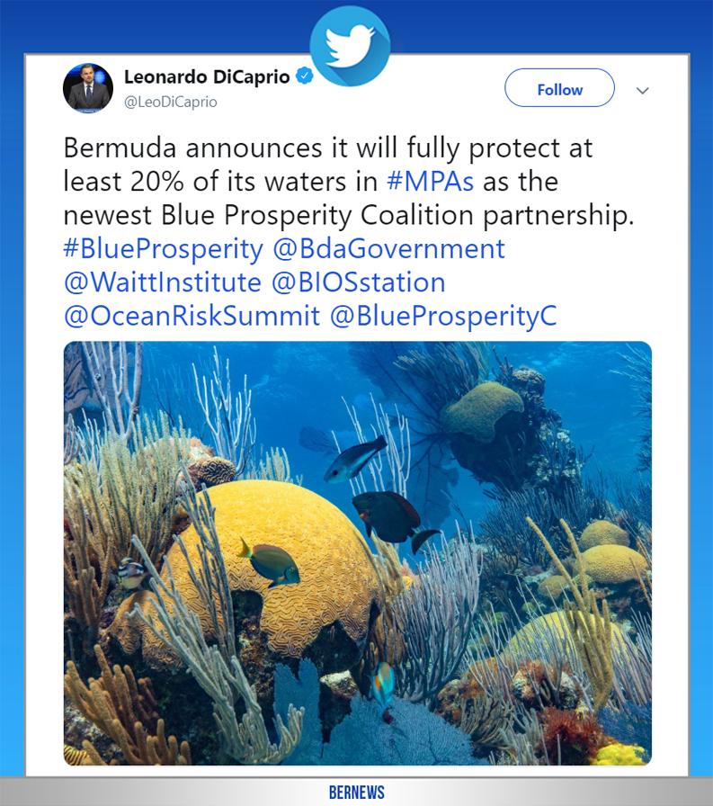 Leonardo DiCaprio tweet June 18 2019