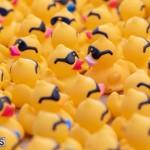 Rubber Duck Derby Bermuda, June 23 2019-4200